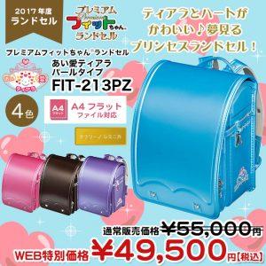 fit213pz-01